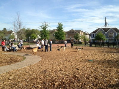 West Webster Street Park Project